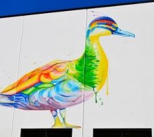 The Duck Mural at Dog Swamp Shopping Centre