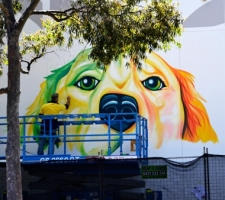 Progress shots of the dog painting at Dog Swamp Shopping Centre