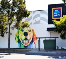 Dog painting on the new Aldi building Dog Swamp completed